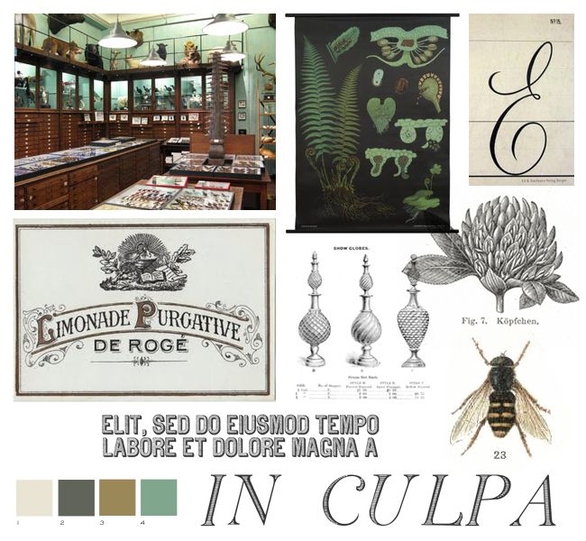 This apothecary inspiration board features colors with a beige, brown, and green palette to provide