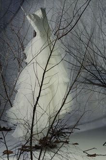 Romantic winter wedding wedding dress hangs in snow covered forest