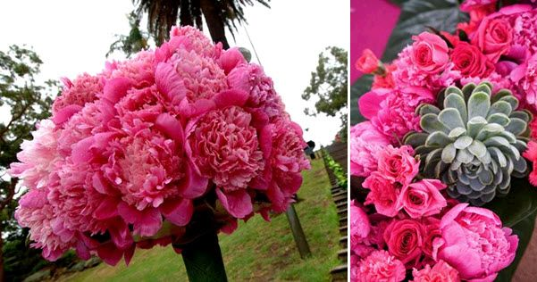 Paved carnations created this stunning pink wedding topiari; pink peonies and carnations mixed with