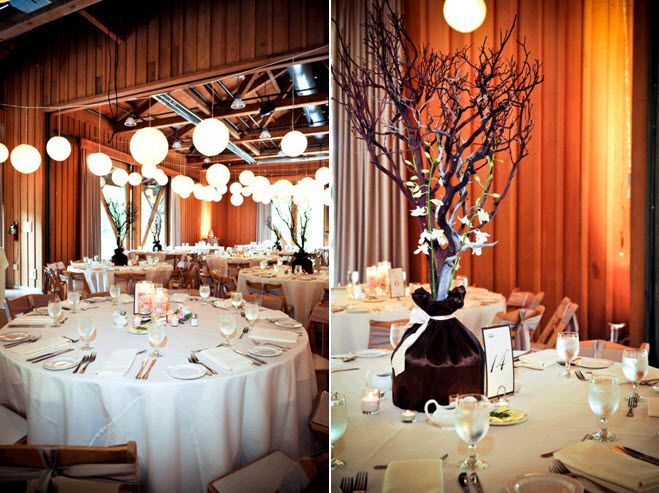 Rustic wedding reception venue with high floral centerpieces featuring manzanilla branches