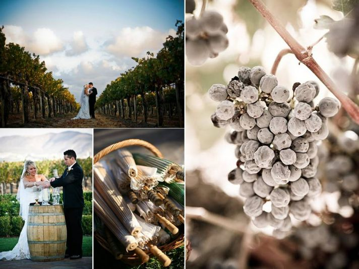 Outdoor vineyard wedding with romantic wedding details