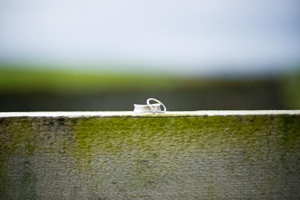 eco-friendly-wedding-bands