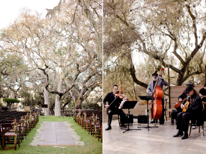 urban outdoor wedding ceremony under birch tree