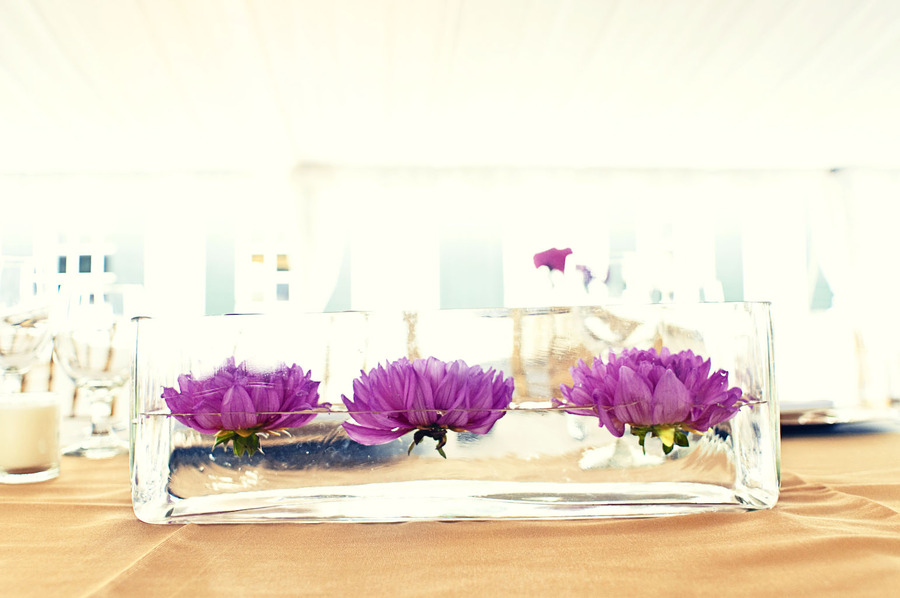 Marne s beautifully lit wedding tent photograph