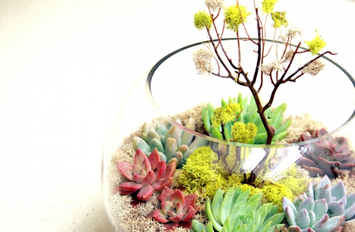simple wedding centerpieces for a handcrafted wedding fishbowl terrarium