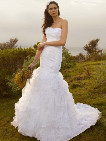 wedding dresses at davids bridal