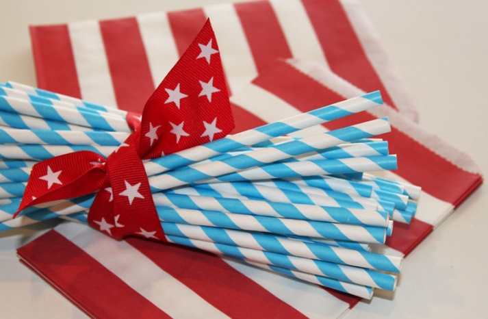 Rock the Vote Nearlyweds 21 Patriotic wedding finds 1