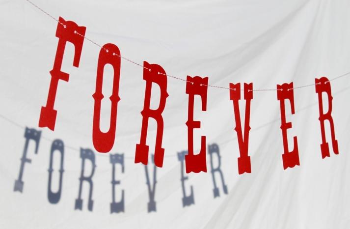 Vintage Carnival Wedding Theme Forever Banner