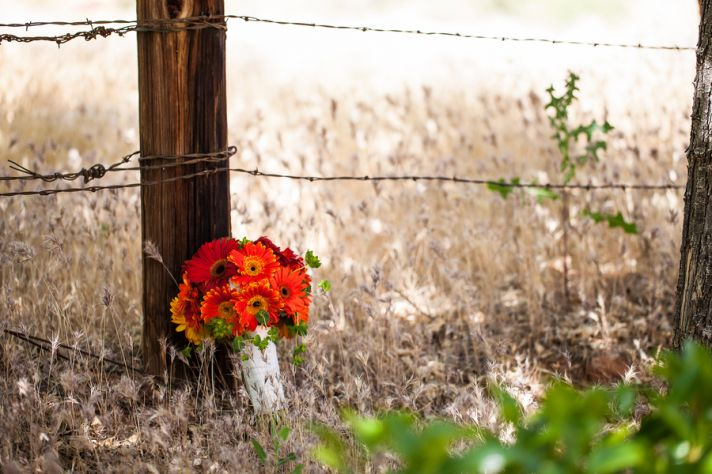 Bouquet and Barbed Wire